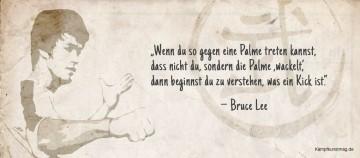 Dieses und weitere 69 Bruce Lee Zitate gibt es auf kampfkunstmag.de