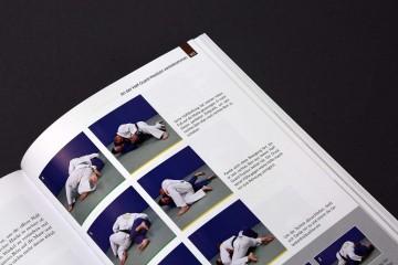 Das große Jiu Jitsu Buch Auszug Braungurt Mount