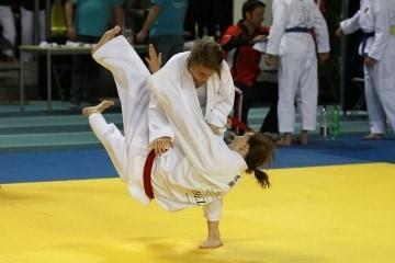 Jiu Jitsu Logo