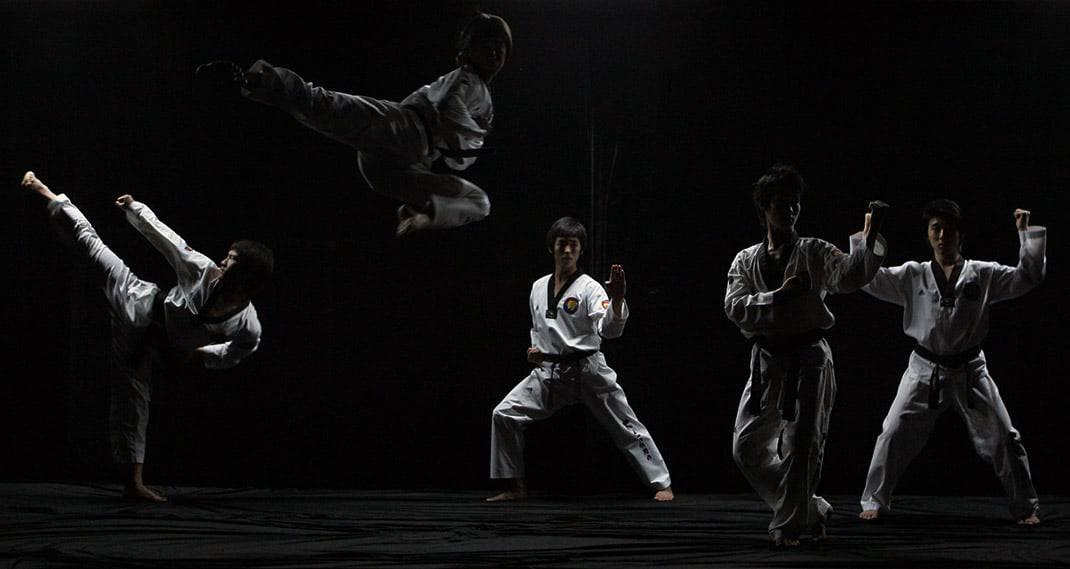 Kampfsportarten Vergleich