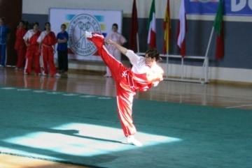 Wushu Logo